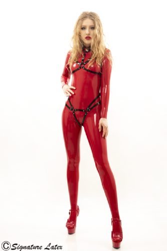 Latex Full Harness Set